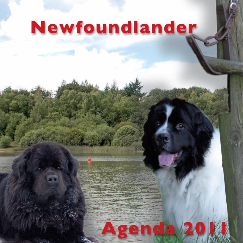 NNFC_Agenda_2011_Omslag_voor.jpg