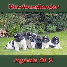 Newfagenda2012omslagKL1.jpg