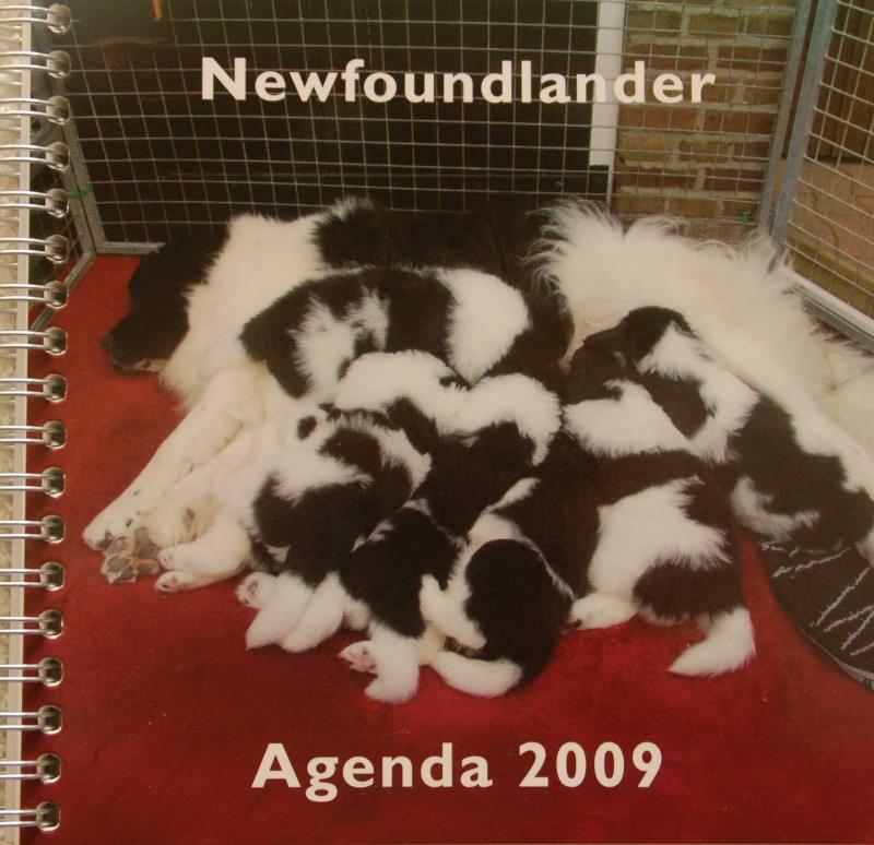 Newfoundlander_agenda_2009.jpg